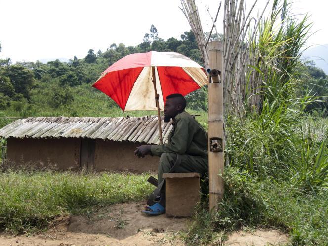 Un combattant Maï Maï, du mouvement APCLS, dans le Nord-Kivu, en 2012.