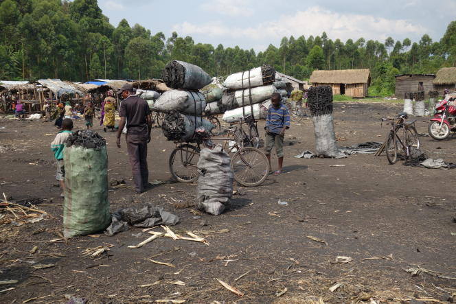 Le centre de transit de charbon de bois de Lupango, en République démocratique du Congo. Joan Tilouine/« Le Monde »