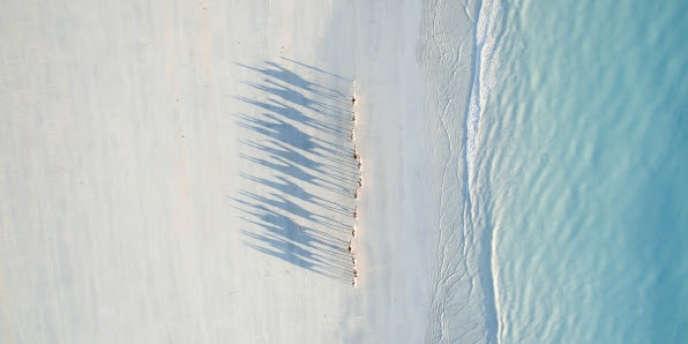 Caravane de chameaux dans le soleil couchant à Cable Beach (Australie).