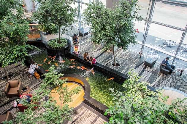 L'aéroport Changi, à Singapour, offre plusieurs havres de détente dont le bassin des carpes.