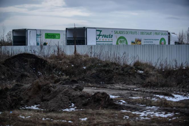 Des camions de l'entreprise Fructofresh à Czarnowice (Pologne), le 12 janvier.