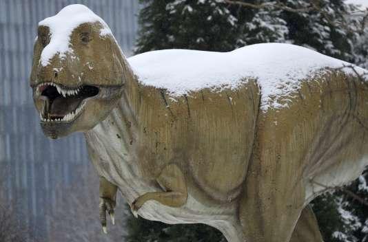 Il existe une corrélation très étroite entre le moment où les dinosaures ont disparu et le moment où des mammifères ont commencé à être actifs pendant la journée.