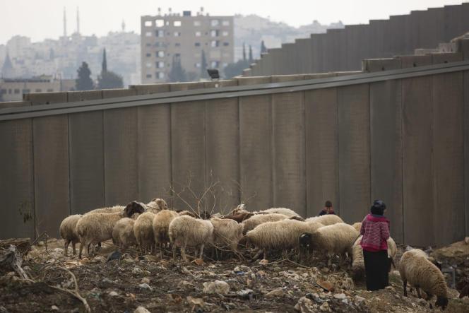 Près du mur de séparation, à El Za'im, point de passage entre Jérusalem-Est et le reste de la Cisjordanie, le 28 décembre.