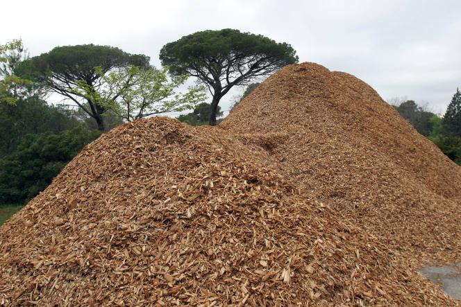 Du bois déchiqueté est recyclé en plaquettes pour chauffage au Muy (Var).