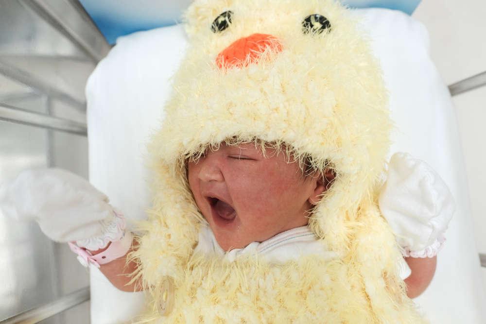 Un nouveau-né habillé en coq dans une maternité de Bangkok, pour fêter le nouvel an lunaire chinois, le 27 janvier.