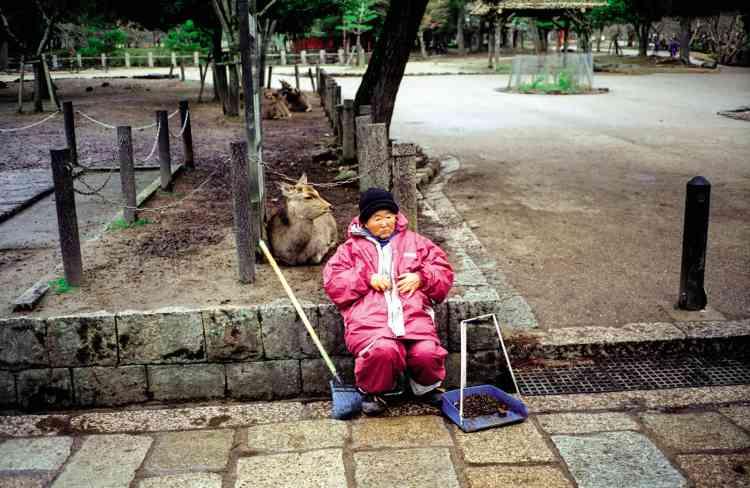 «Un daim s'est installé près de cette femme chargée du nettoyage du parc. On aurait dit un chat»,raconte la photographe Mika Kitamura.