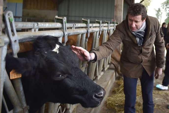 Yannick Jadot, lors de la visite d'uneferme écologique, en février 2017, à Evran (Côtes-d'Armor).