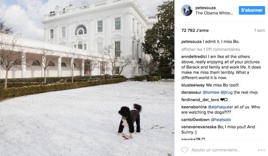 « Je l'admets, Bo me manque», avoue Pete Souza, parlant du chien des Obama.« Je ressens la même chose que tous ceux qui ont posté des commentaires (…), répond un internaute. Cela accentue le fait que [les Obama] me manquent terriblement. Le monde est si différent aujourd'hui».