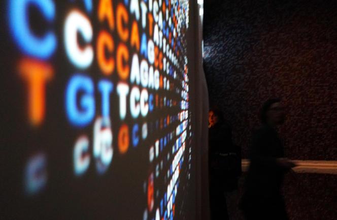L'exposition « ADN : le grand livre de la vie, de Mendel aux études sur le génome», au palais des expositions de Rome, le 9 février.