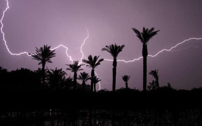 Les palmiers, lorsqu'ils sont de très haute taille, attirent les éclairs et transmettent à la terre l'électricité tombée du ciel.