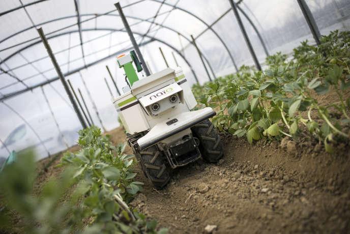 «L'industrie constitue une arme antichômage et un stabilisateur social» (Photo: l'entreprise NaÏo à Toulouse fabrique des robots agricole, février 2017).