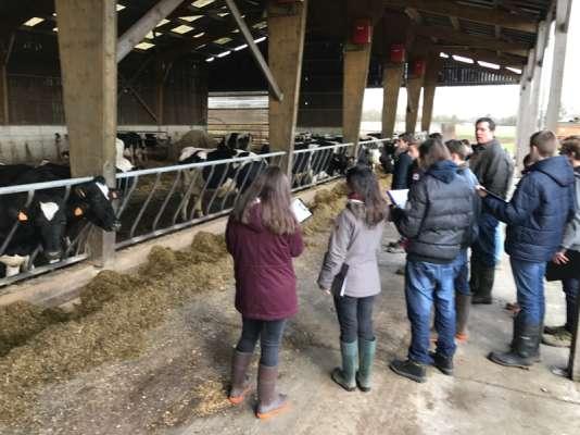 Le lycée agricole de Montoire-sur-le-Loir, à une vingtaine de kilomètres de Vendôme (Loir-et-Cher), forme aux différents types d'élevage et de culture.