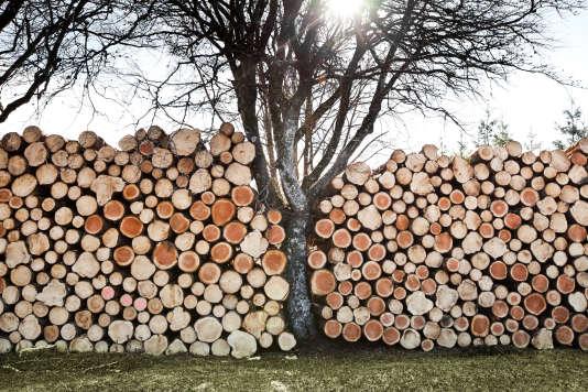 La coupe du bois et la taille du granit, les deux activités séculaires de Bugeat, en Corrèze, où est attendue une famille de réfugiés soudanais.