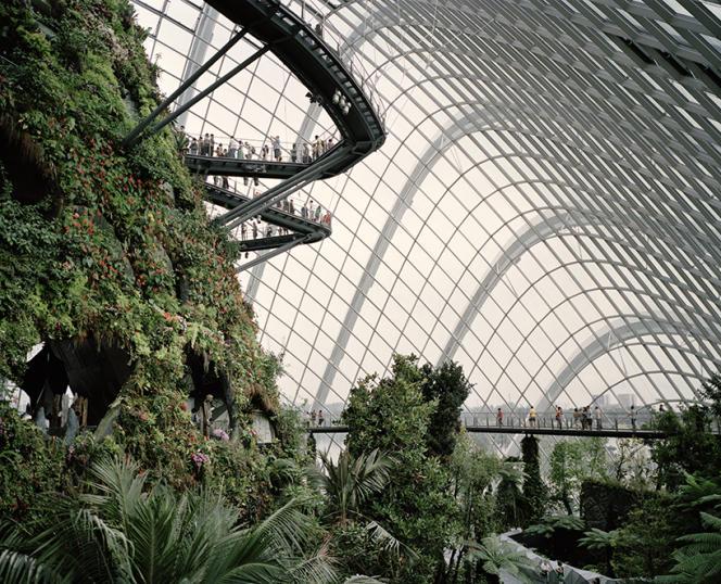 La « Cloud Forest », l'une des deux serres climatisées du parc floral Les Jardins de la Baie, à Singapour, abrite une montagne de 35 m de haut.