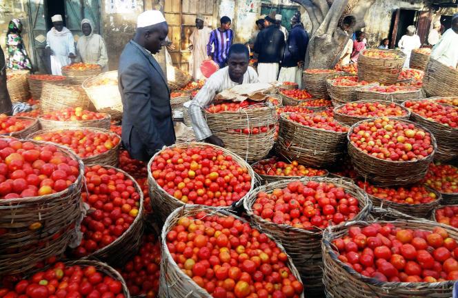Un marché de Kano, dans le nord du Nigeria, en janvier 2016.