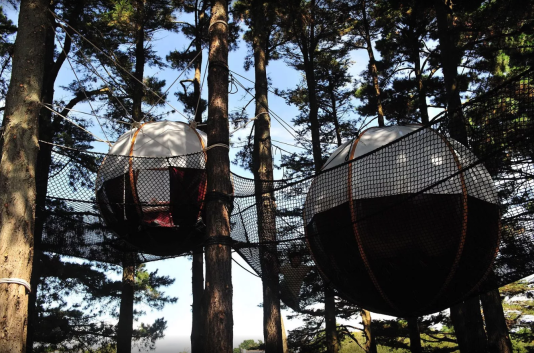 Réveil au pépiement des oiseaux garanti en dormant dans les Nid'îles.