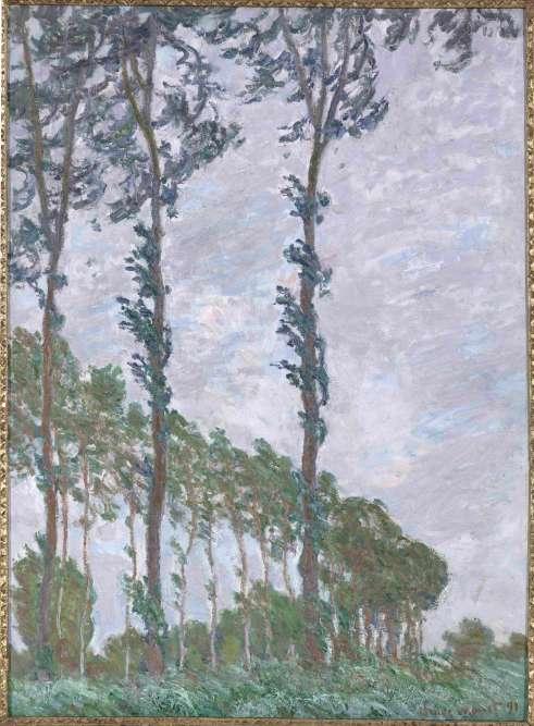Cette série comprend plus d'une vingtaine de peintures d'après les arbres plantés au bord du marais de Limetz, près de Giverny. La verticalité des arbres est accentuée par le format choisi, étiré en hauteur, où l'on peut ressentir le vent– véritable force de la nature.