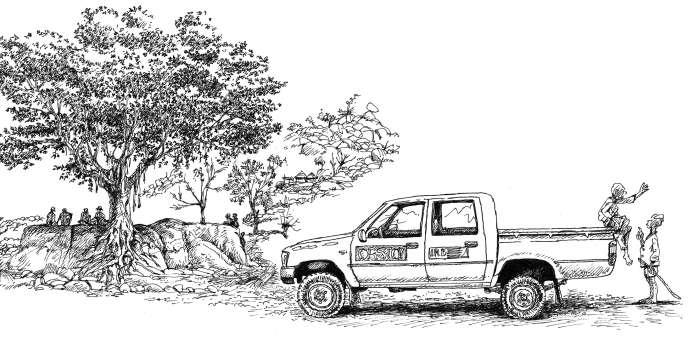 L'arbre de l'enquêteur, un ficus (piémont des monts Mandara).