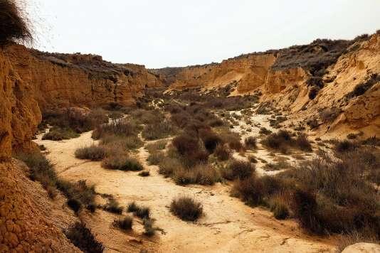 Un des larges canyons qui traverse le parc et lui confère son relief accidenté. Il y pousse une végétation typique – romarin sauvage, soude roulante, spart.