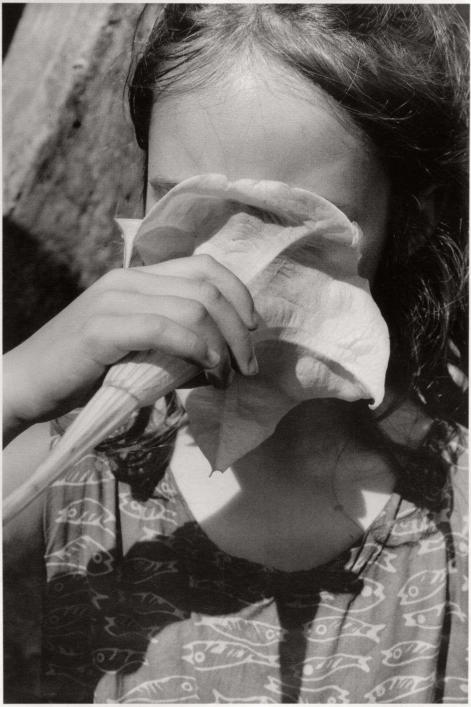 «Explorant la faculté de l'odorat à nous ouvrir les chemins de la connaissance, l'artiste saisit un enfant feignant d'inhaler les effluves toxiques de la datura, plante réputée pour ses propriétés hallucinogènes.»