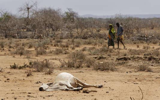 Dans le village de Bandero, dans le nord du Kenya, le 3 mars.