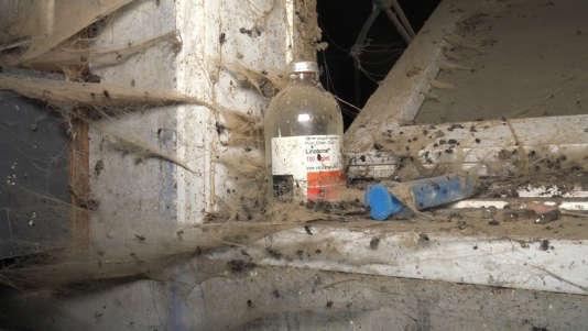 Des antibiotiques périmés occupent les étagères, où les toiles d'araignée et la poussière s'accumulent.