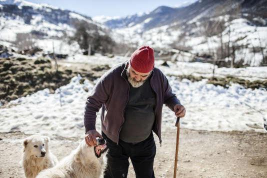 Dans l'élevage ovin de Gregorio Rotolo à Scanno, le loup n'a pas pointé le bout de son museau depuis cinq années.