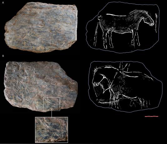 Tablette n° 741 trouvée sur le site du rocher de l'Impératrice, près de Plougastel-Daoulas (Finistère). Les chevaux présents sur les deux faces ont été gravés il y a 14000ans.