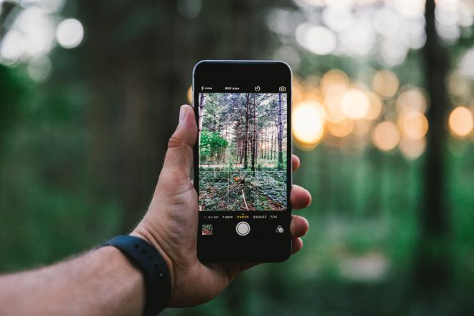 Le futur logiciel devrait permettre aux étudiants en sylviculture de mieux anticiper les peuplements forestiers.