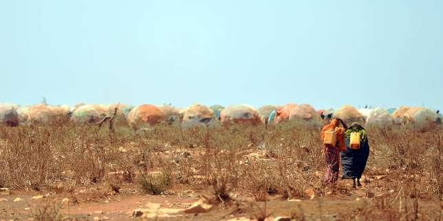 Climat: 2016 bat un record de chaleur, la planète entre en «territoire inconnu»
