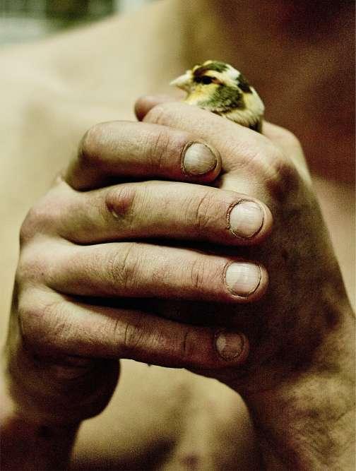 Les mains de Mateusz, 17 ans, sont déjà très abîmées. Le jeune homme adorait élever des oiseaux et des lapins, pour lesquels il avait construit une trentaine de cages. Lors d'un accès de rage, il a tué tous ses protégés.