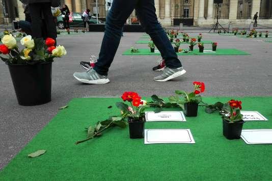 Place du Palais-Royal, à Paris, des roses rouges, blanches et orange sont mises à la disposition des passants qui souhaitent en déposer devant les stèles qui honorent les« morts de la rue».