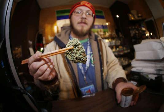 Une variété de cannabis particulièrement puissante dans un dispensaire de Denver, aux Etats-Unis, le 9 décembre 2014.