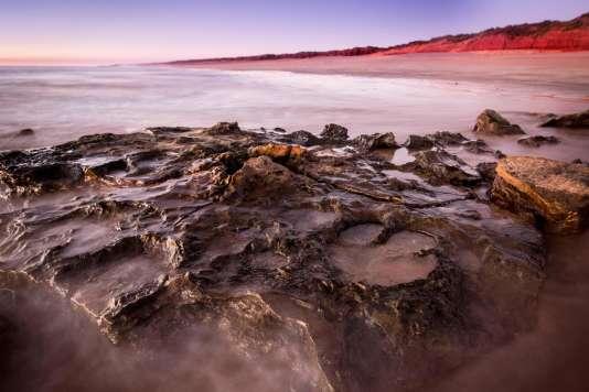 Des traces du passage de dinosaures décelées par les chercheurs australiens.