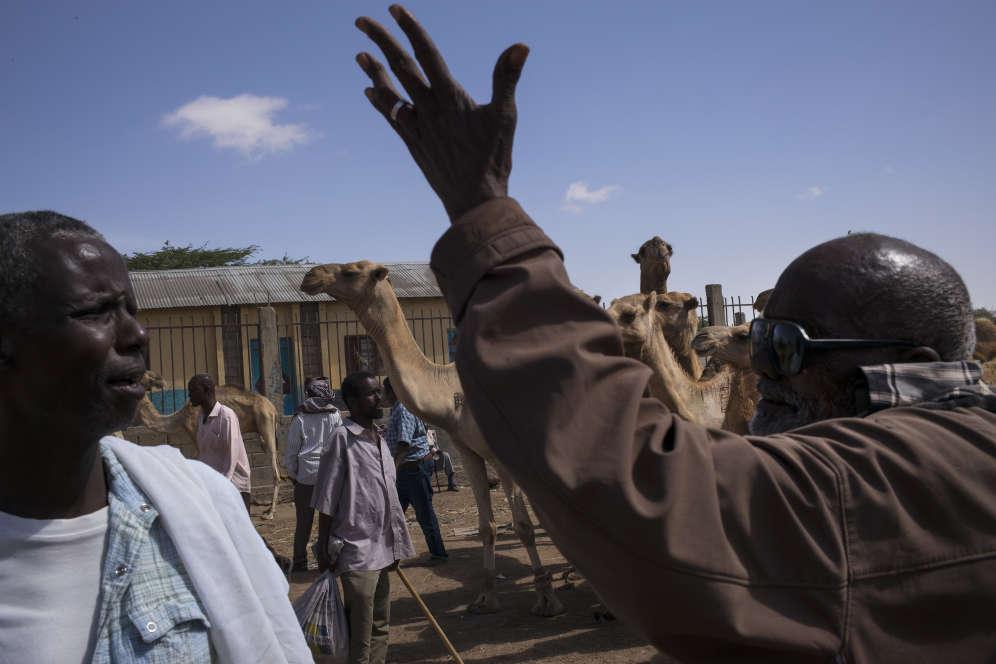 Des hommes négocient les dromadaires sur le marché au bétail d'Hargeisa, le 25 mars.