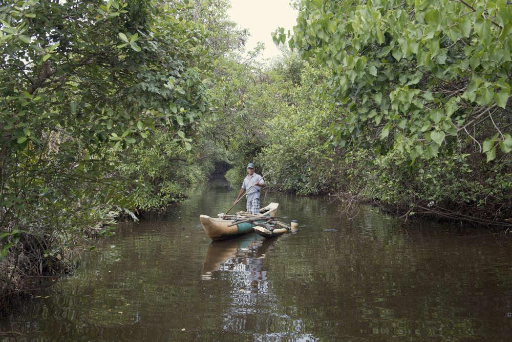 Justin Fernando sur sa barque. Dans sa jeunesse, ce pêcheur pouvait sans difficulté revenir à la rive sa barque chargée de vingt kilos de poisson. Mais l'environnement s'est dégradéau cours du dernier quart de siècle et ses filets se sont vidés : il ne pêche plus que cinq kilos de poisson par jour.