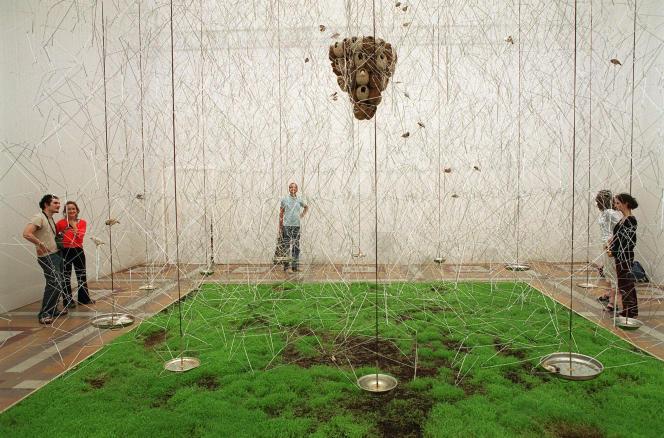 L'œuvre«From Here to Ear», de l'artiste-compositeur Céleste Boursier-Mougenot,à l'Ecole supérieure des beaux-arts de Paris, en juin 2002.