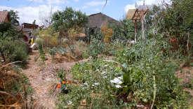 Une image du documentaire français d'Adrien Bellay,«L'Eveil de la permaculture», sorti en salles mercredi 19 avril 2017.
