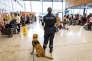 Aéroport de Cayenne Félix-Eboué. La douane observe l'arrivée des passagers avec un chien spécialisé dans la recherche de stupéfiants.
