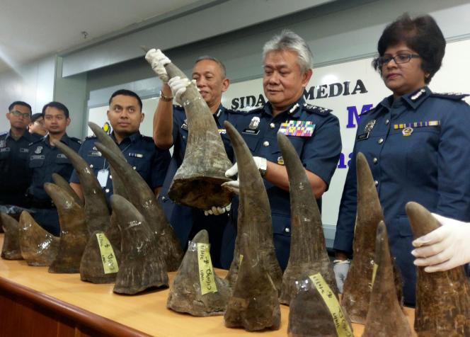 Début avril, les douanes de Malaisie ont exhibé une saisie de cornes de rhinocéros en provenance du Mozambique et qui étaient destinées au marché chinois.
