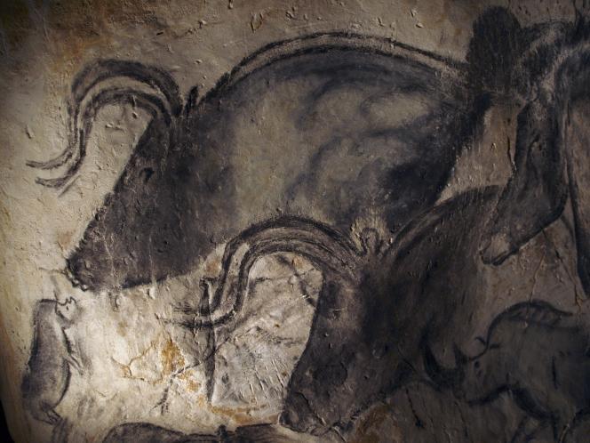 Un aurochs de la grotte Chauvet (paléolithique).