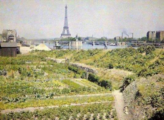 Maraîchage à Paris au début du XXe siècle.