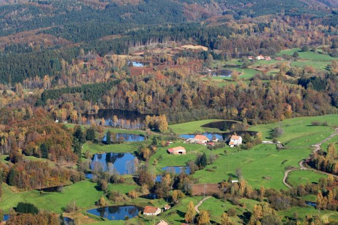 Le pays des 1000étangs, dans le massif des Vosges.