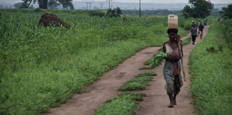 Une femme se rend aux champs, dans la région de Nsanje, dans l'extrême-sud du Malawi.