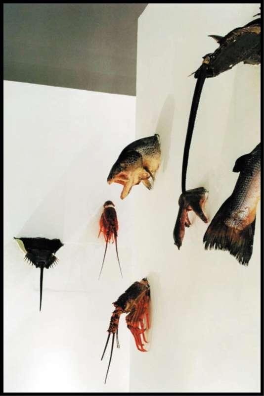 «Aquatic Wall» (1998), de Sun Yuan et Peng Yu.