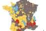 Carte des résultats du 1er tour de la présidentielle par circonscription