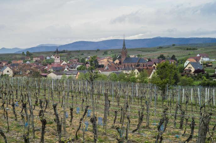 Le domaine de la Romanée-Conti produit chaque année entre 5 000 et 6 000 bouteilles, revendues à des prix pouvant dépasser 10 000 euros la bouteille.