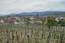 Le village de Balbronn vu des vignes, le 25 avril 2017.