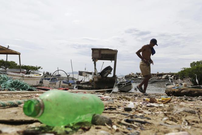 L'Union internationale pour la conservation de la nature (IUCN) estime que 9,5 millions de tonnes de plastique y sont déversées tous les ans.