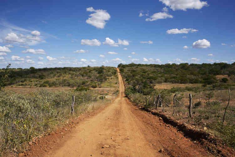 Municipalité de Dormentes. Située au milieu du Sertao, la zone semi-aride est décrite comme le« polygone de la sécheresse».